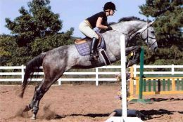 Two Point Position Jumping An Introduction On Hunter And
