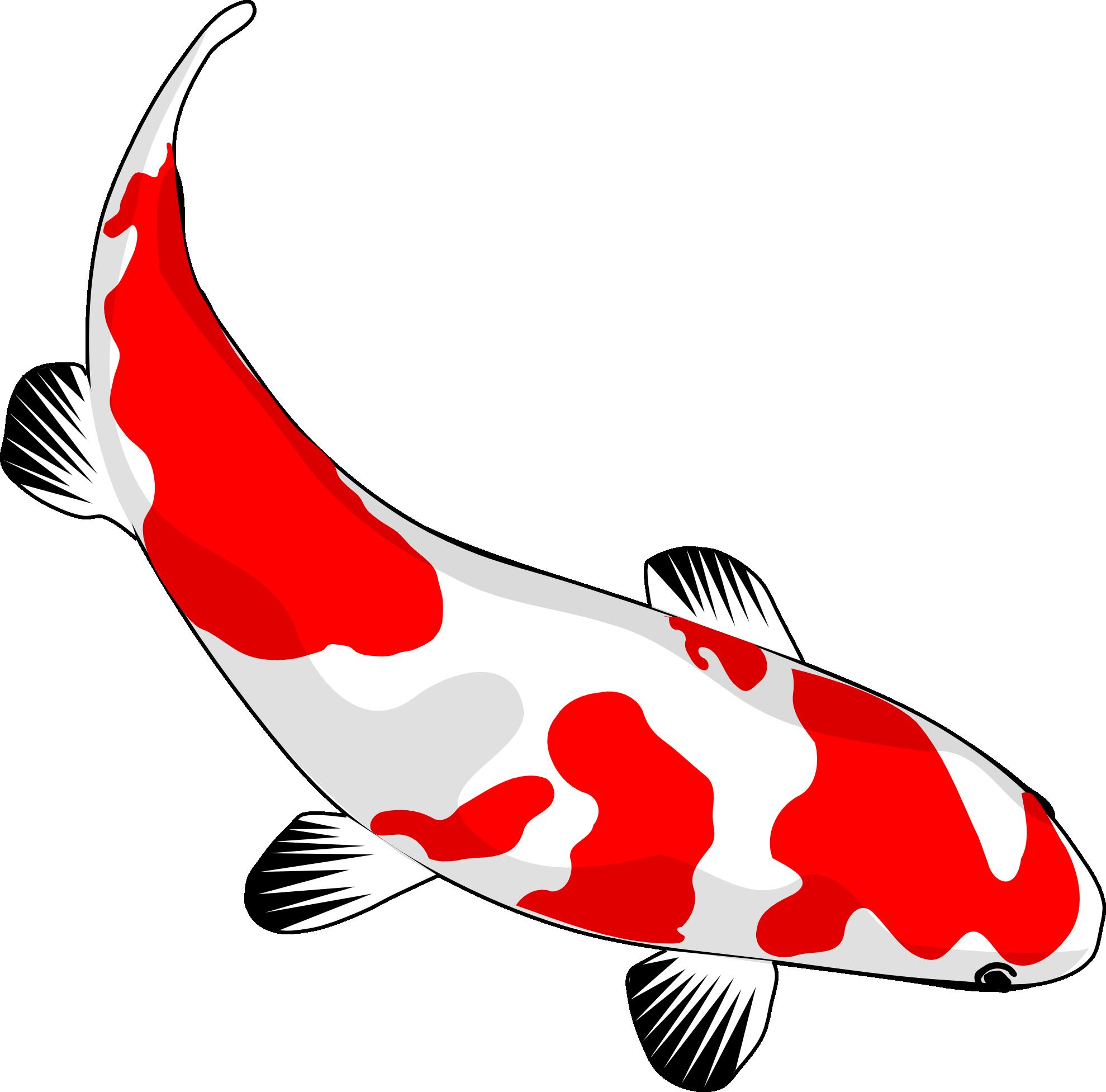 koi fish clip art 842852 png art pinterest koi koi art and rh pinterest com koi fish vector png koi fish vector drawing