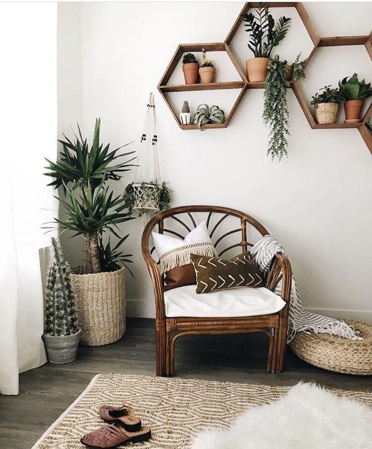 Photo of Planken boho witte muren Scandinavische planten veel cactus vlees houten stoel …