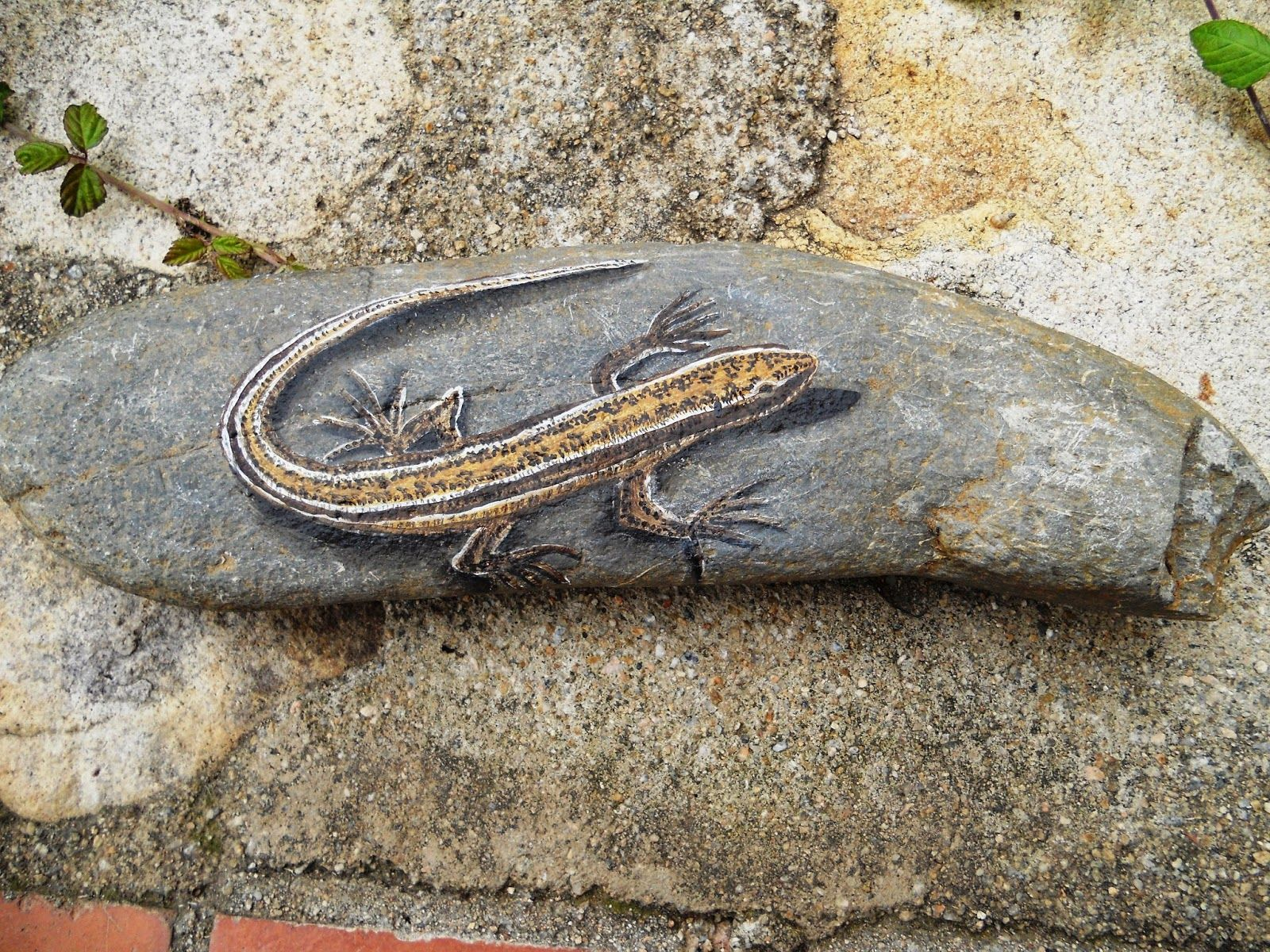 Piedras pintadas a mano lagartija tomando el sol rocks pinterest rock painting rock and Piedras pintadas a mano