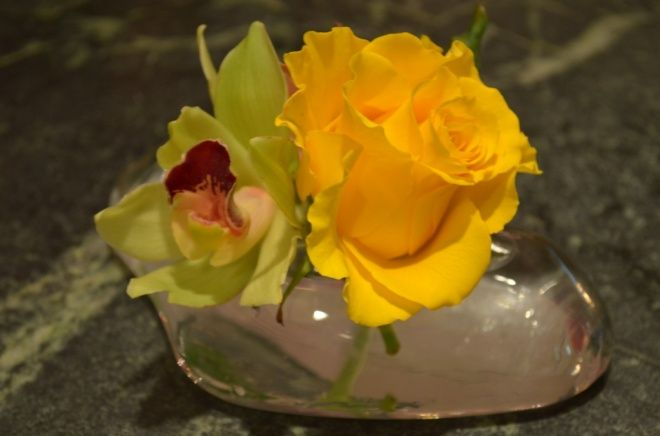 green orchid and yellow rose