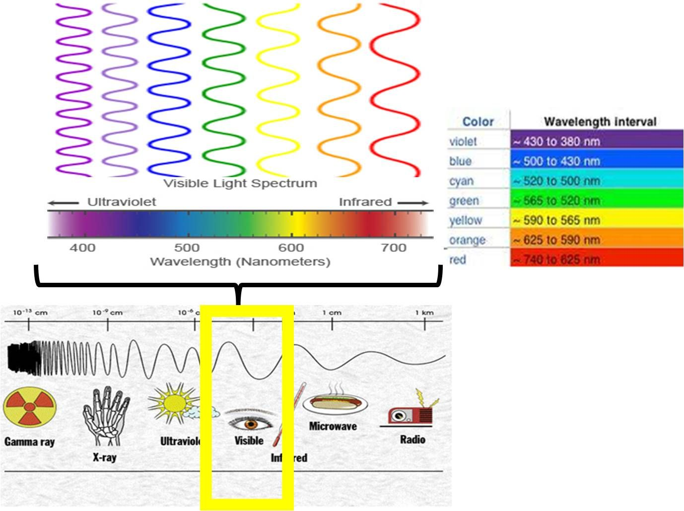 worksheet Electromagnetic Spectrum Worksheet pin by jacqueline calip on human energy field pinterest visible light spectrum a small part of the electromagnetic that we can actually see