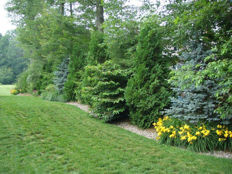 landscaping design providing planting