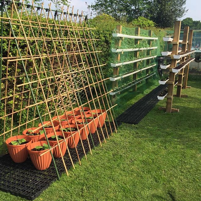 Instagram Photo By Gardens That Win May 28 2016 At 4 48pm Utc Gutter Garden Vertical Vegetable Gardens Verticle Garden