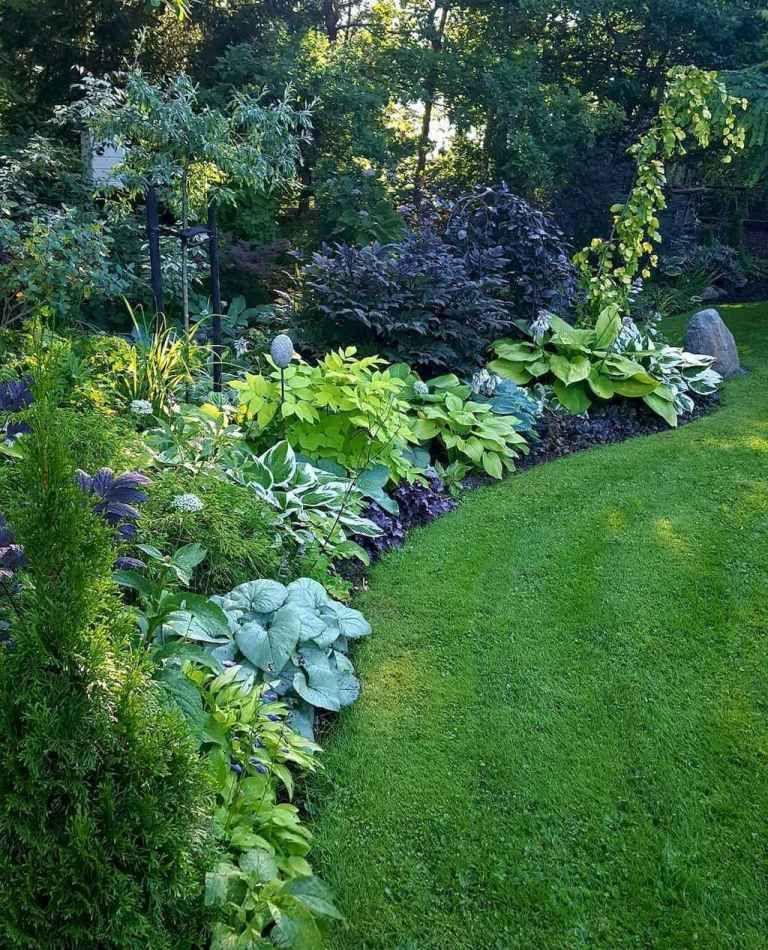 beautiful side yard garden path