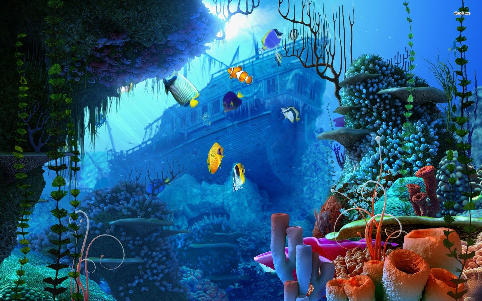 Undersea Wallpaper HD 3Ka Underwater wallpaper