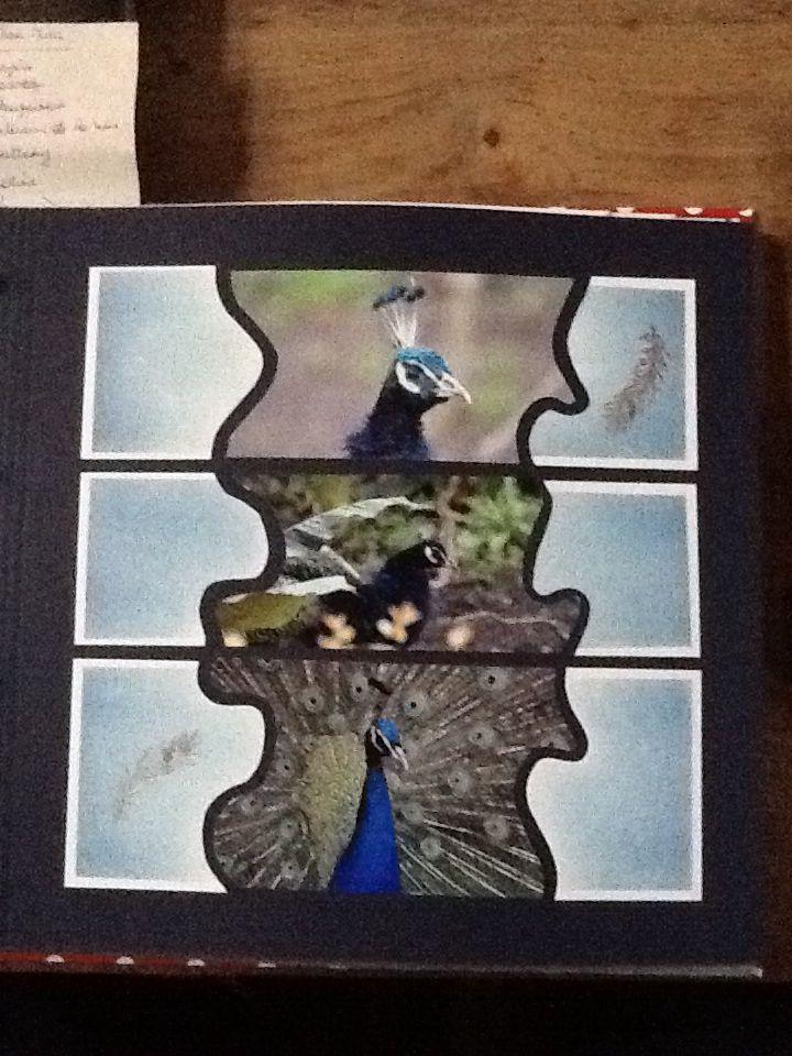 Gabarit joue, papier mist, craies bleues , tampon plume encré