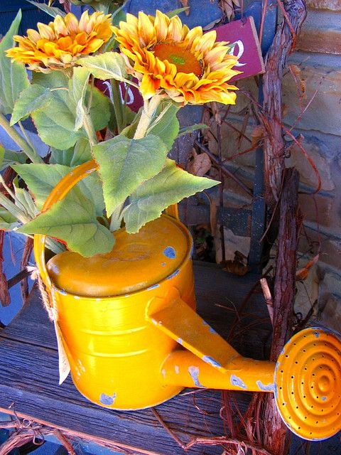 Watering Can Sunflowers Watering Watering Can Garden Containers