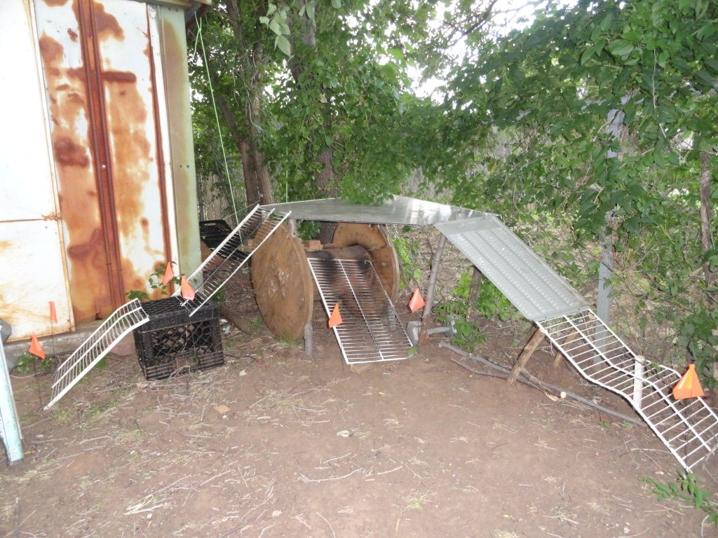 my backyard crawler course pic heavy rc rock crawlers