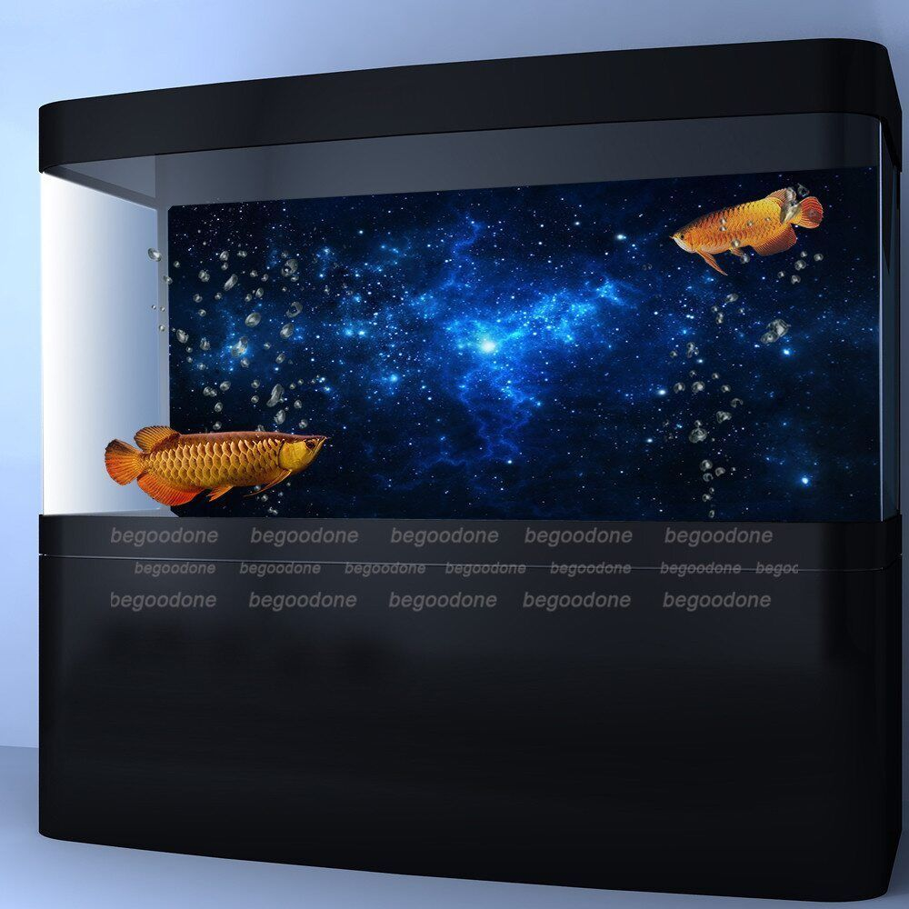 aquarium background paper Looking to buy aquarium fish tank backdrops online ranging from 60 – 200cm in size, our aquarium backgrounds are priced from just £599 free uk delivery.