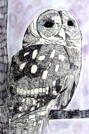 Pen and ink owls - 6th grade