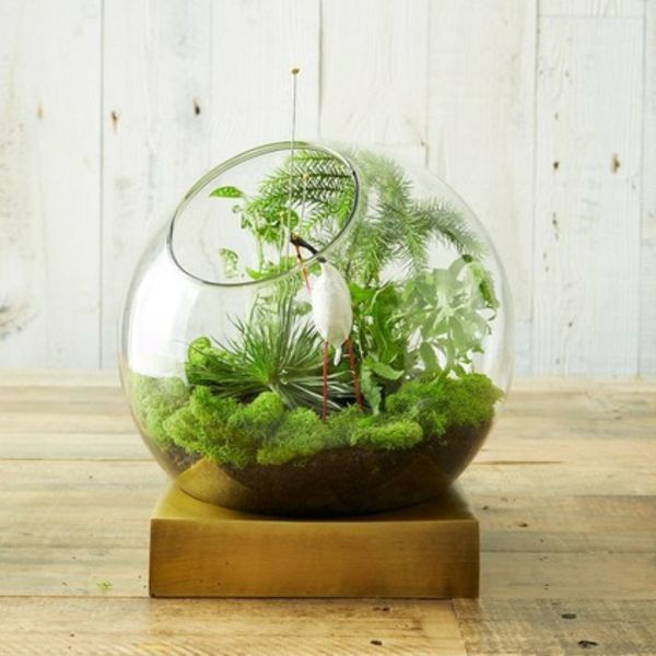 Terrarium selber bauen - Ideen und inspirierende Beispiele - deko fur aquarium selber machen