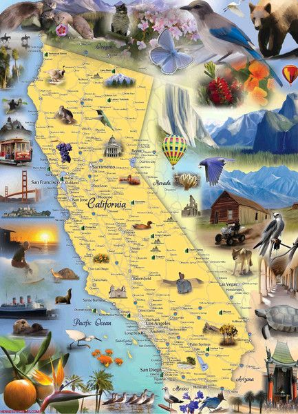 Test your sense of geography with this 1000 piece illustrated map