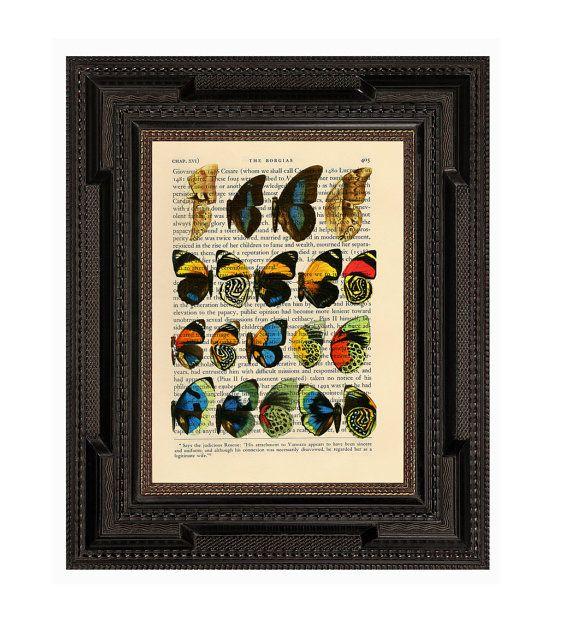 Vivid Butterfly Wing Diagram Original Vintage Print by AvantPrint, $7.00