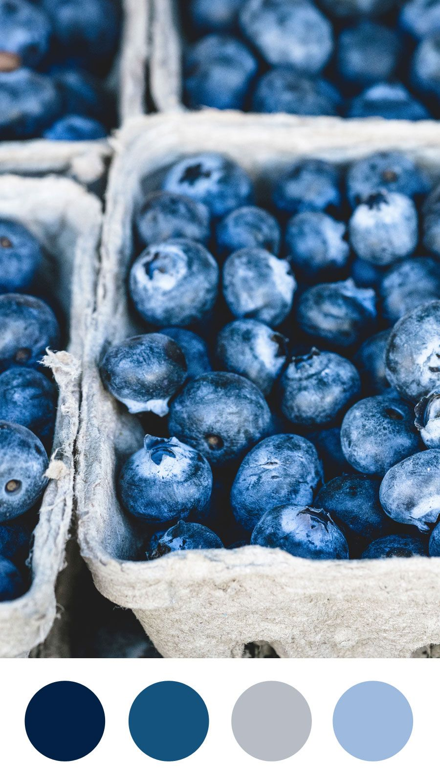 Box of Blueberries Color Palette | Emma Englishby | Navy, cobalt blue and sapphire blue color palette