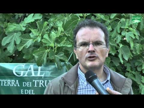 """FOGLIE TV – Presentazione del progetto """"Cross Border"""" a Putignano"""