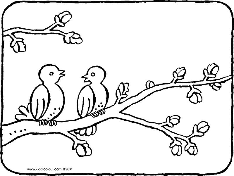 twee vogels op een boomtak in de lente kleurprent