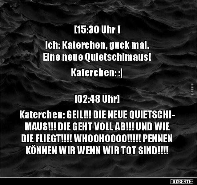 Photo of [15:30 Uhr ] Ich: Katerchen, look. A new..