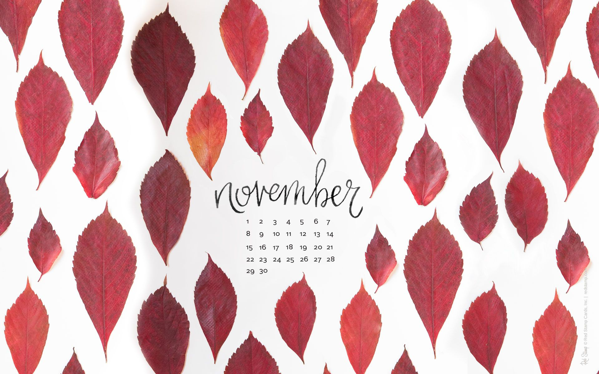 Computerkleider - Free Desktop Wallpaper im November | November ...