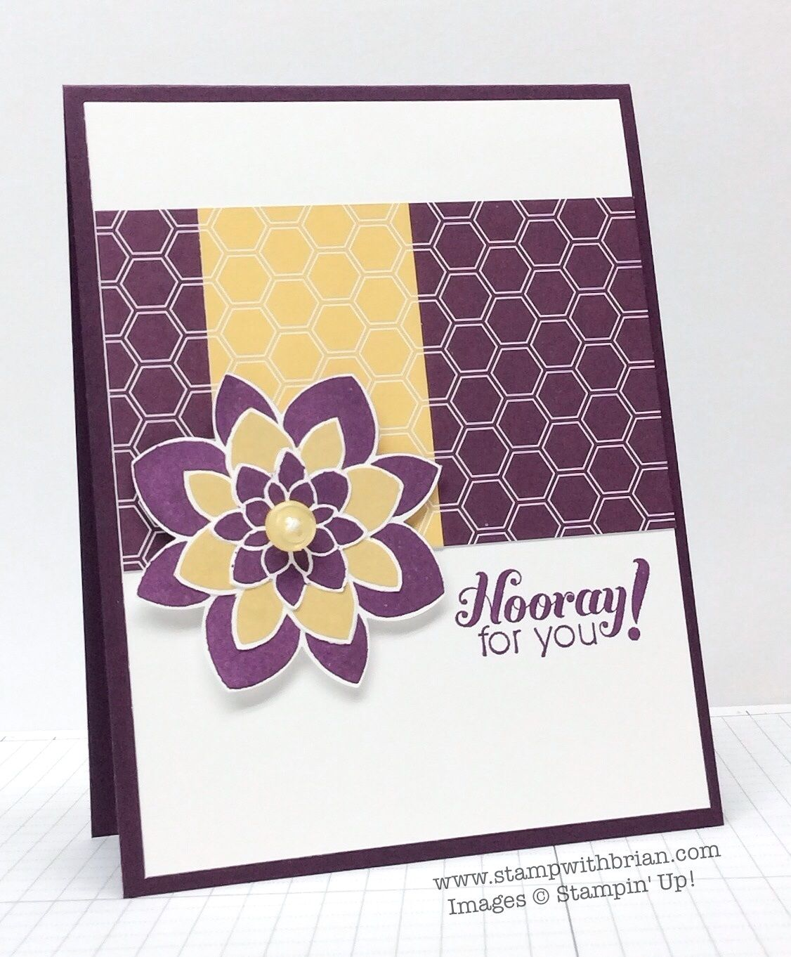 Crazy About You, Garden Party, Moonlight Designer Series Paper, Stampin' Up!, Brian King, FabFri60