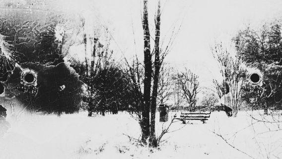 Nieuw in mijn Werk aan de Muur shop: Park in zwart&wit