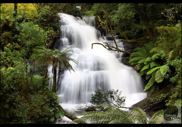 Triplet Falls can be found in Great Otway National Park