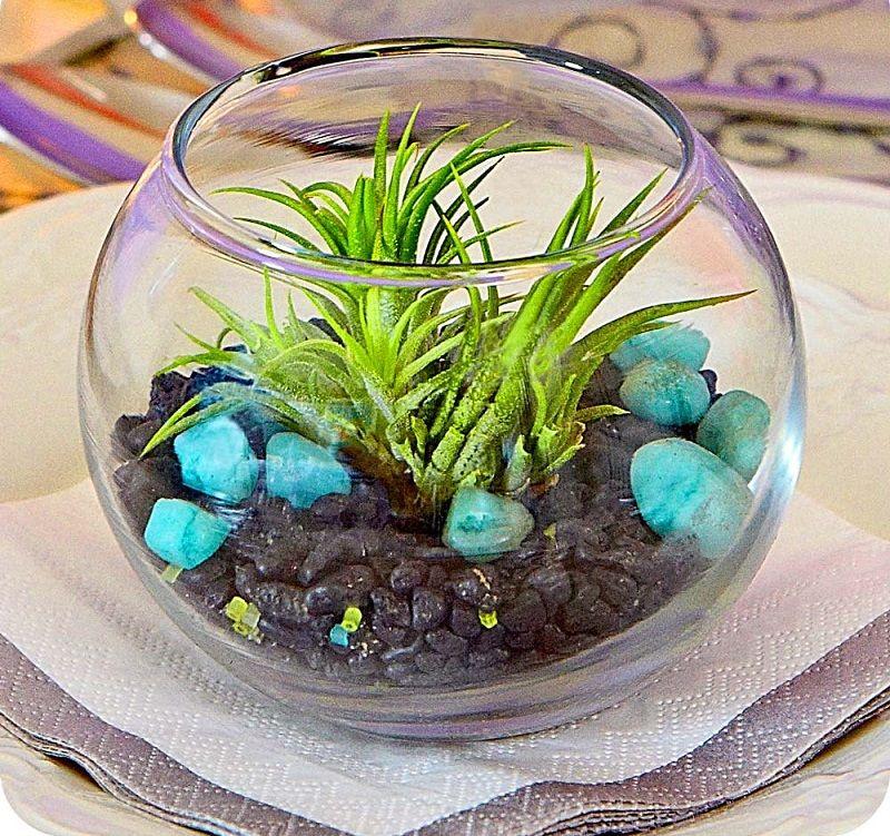 adorable making a zen garden at home. 25  Adorable Miniature Terrarium Ideas For You To Try Zen GardensMiniature