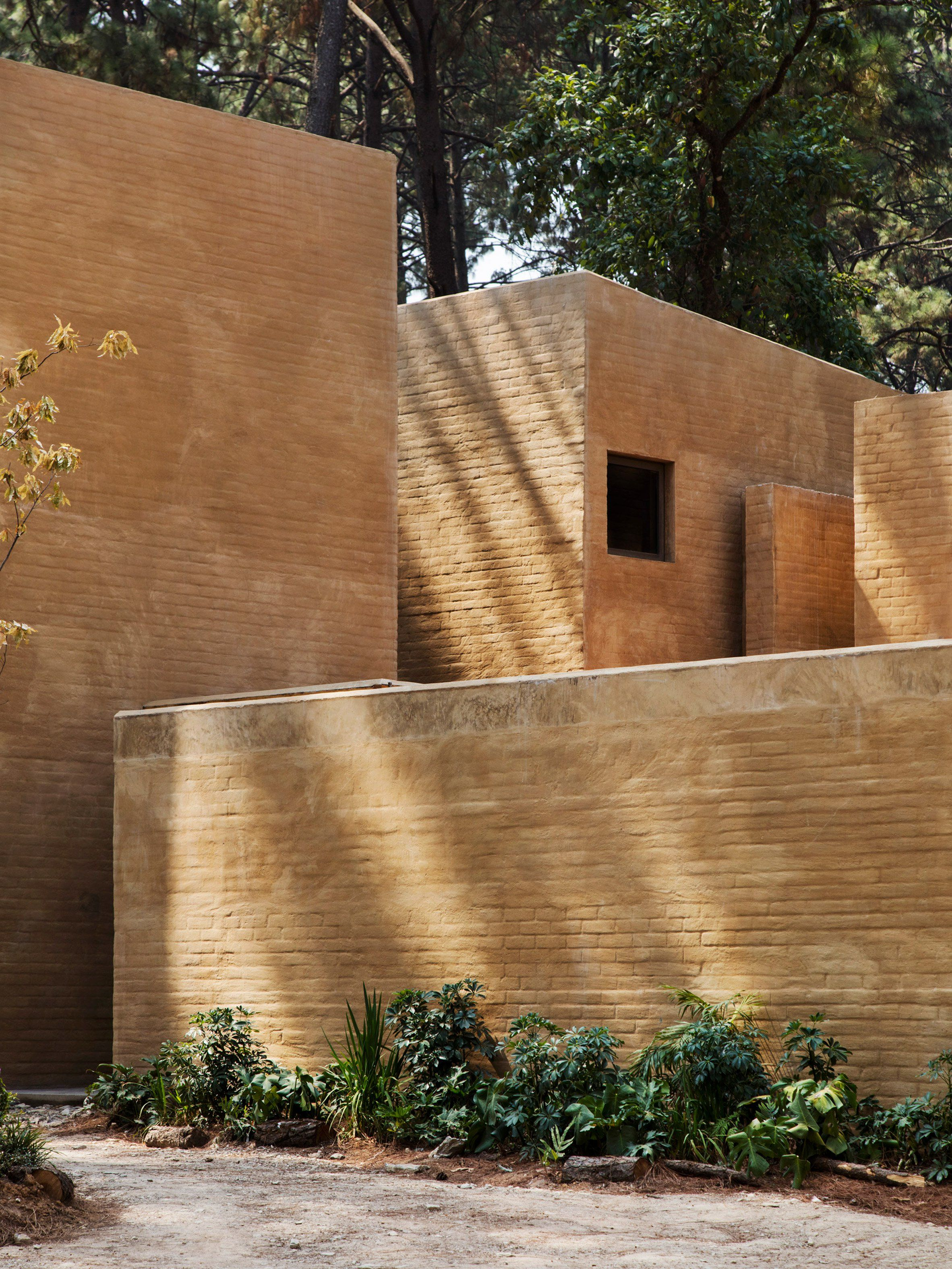 dezeen com entre pinos taller hector  amazing architecture