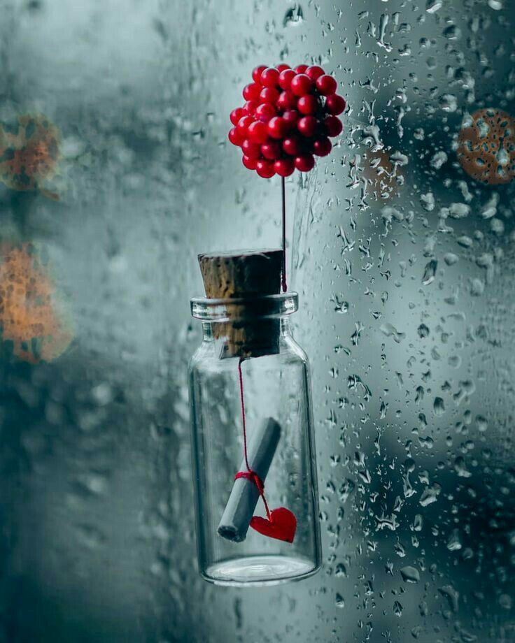 Pin By Dao Tieu On Love Cute Wallpapers Miniature Photography Beautiful Wallpapers