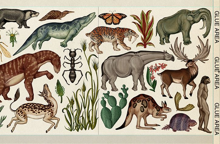 Illustrator Katie Scott shares the intricate working process involved in her new book on evolution