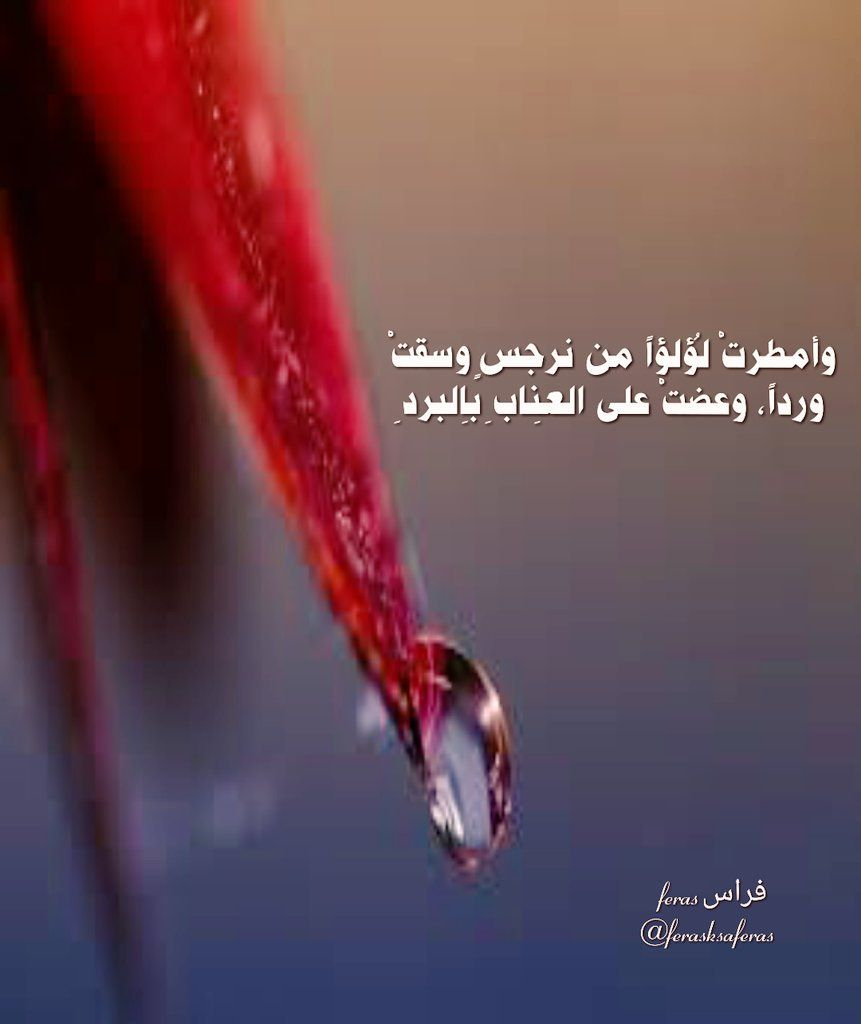 Pin By Salah Abbas On كلام الحب