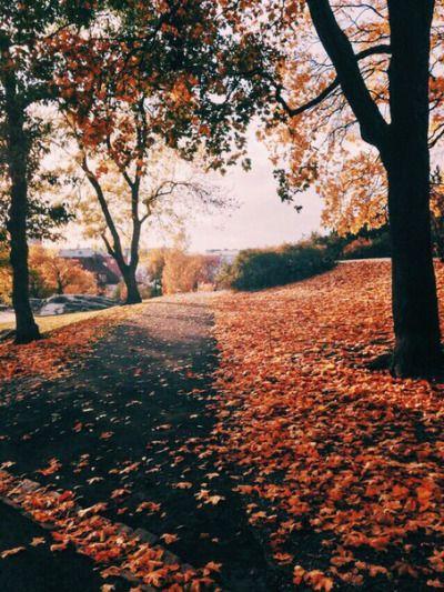 POPSUGAR | Autumn cozy, Scenery, Autumn aesthetic