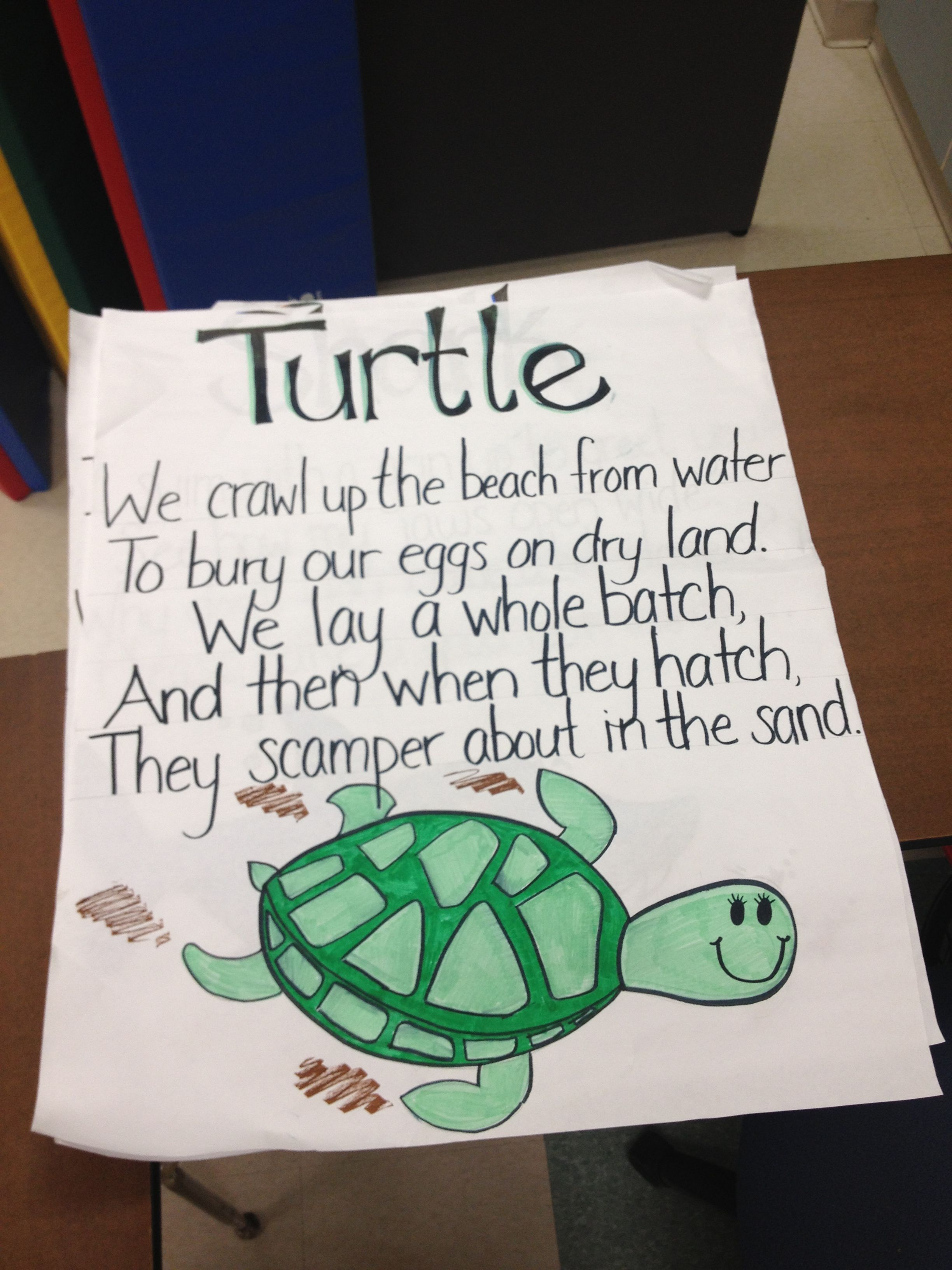 Turtle Poem From Commotion In The Ocean