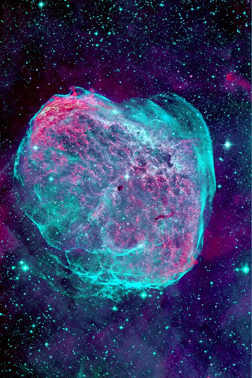 """Every beauty which is seen here below by persons of perception resembles more than anything else that celestial source from which we all come… ~ Michelangelo Crescent Nebula"