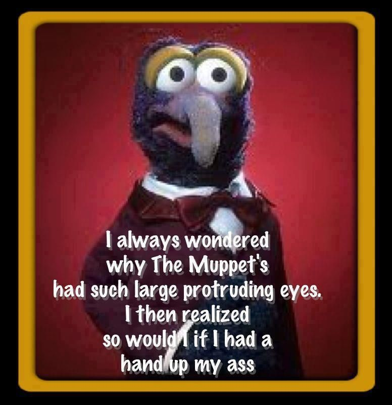 1000  images about Muppet love on Pinterest | Jokes, The muppets ...