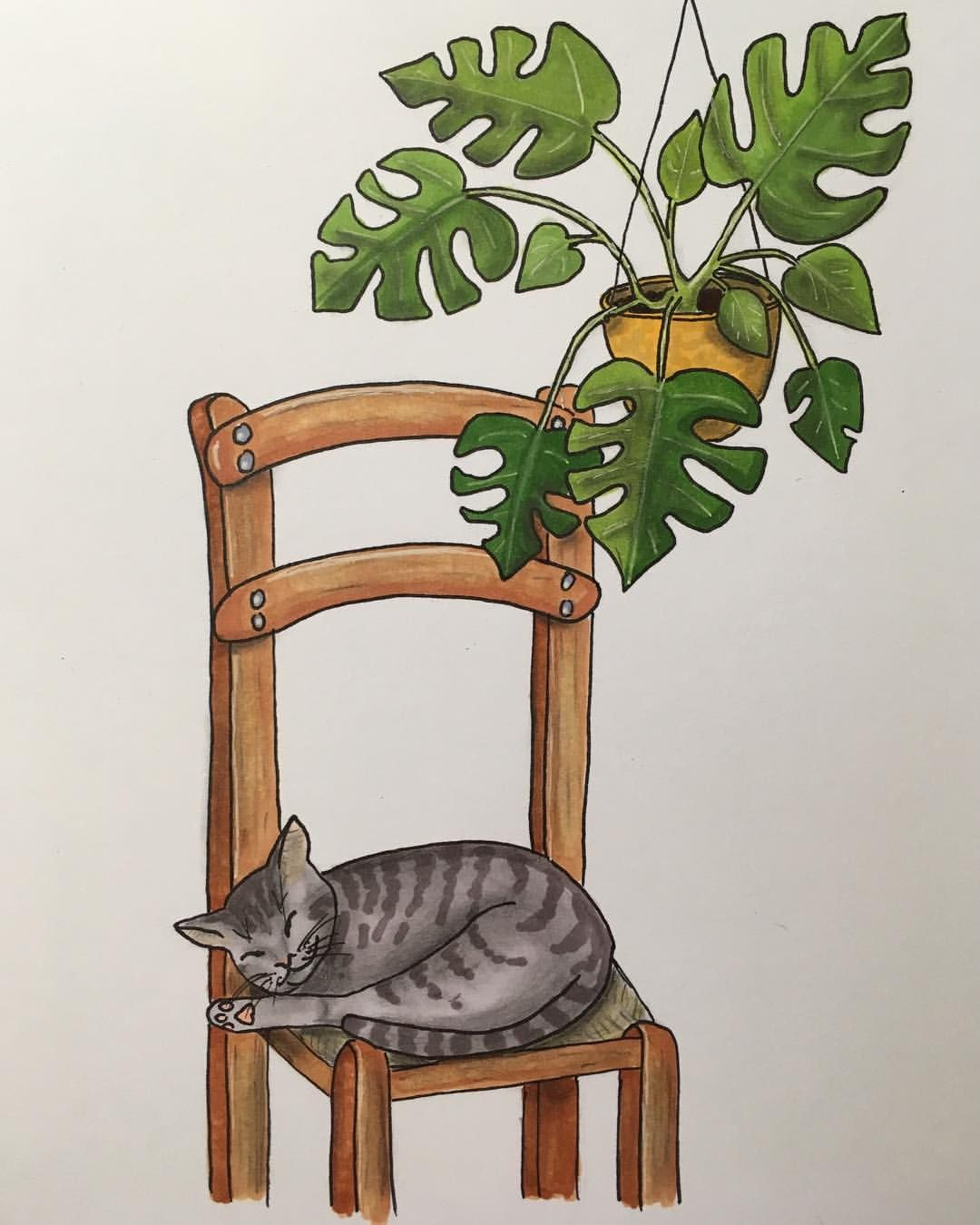360 Vind Ik Leuks 8 Reacties Plants Illustrations Drawingplantlady Op Instagram Monstera Cat Drawin Amazing Art Painting Plant Art Hawaiian Art