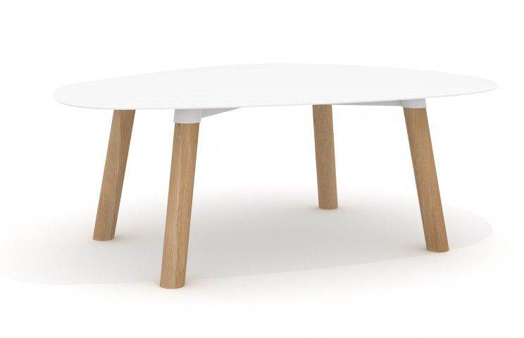 Turtle Table 37