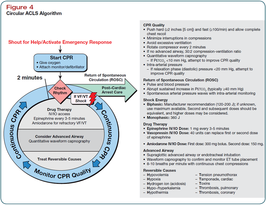 Pin By Shelly Josey Winter On Health Acls Algorithm Cardiac Acls