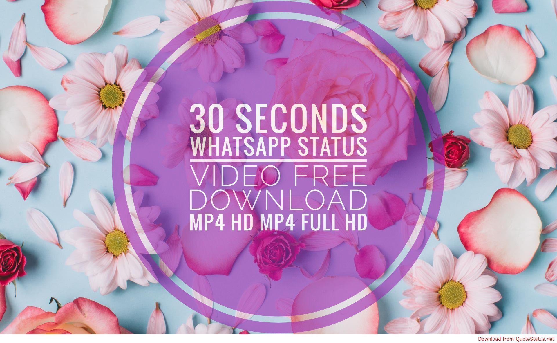30 seconds whatsapp status video free download mp4 hd mp4 ...