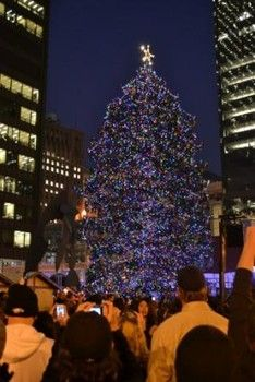 Christmas In Chicago.Pin On Chicago Things To Do Best Travel Deals