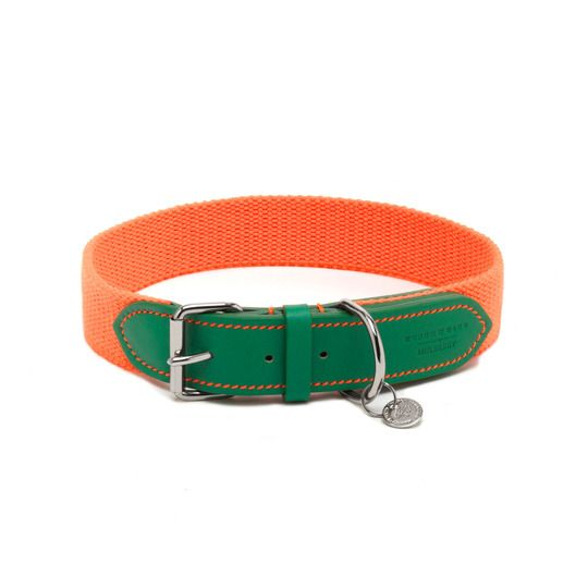 Dog Collar from Mulberry.