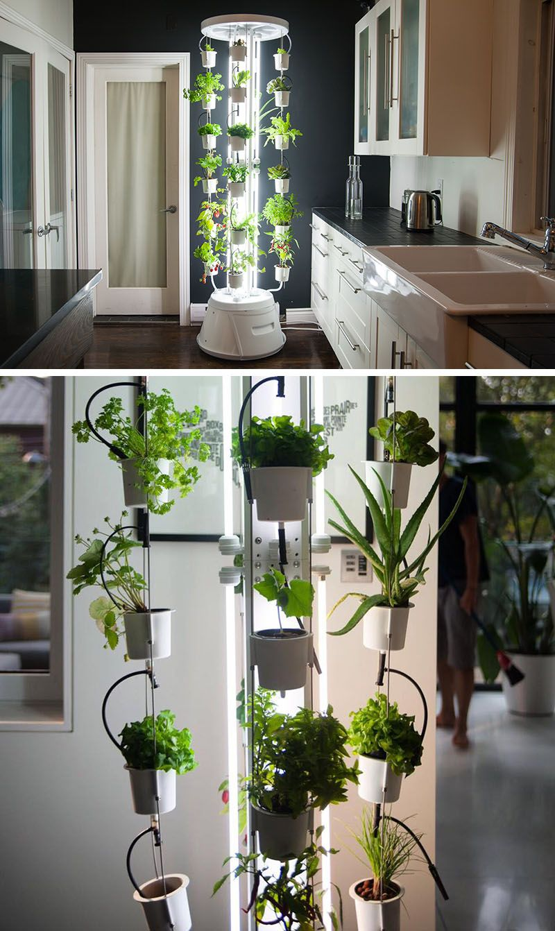 5 Vertical Vegetable Garden Ideas For Beginners | Vertical ...