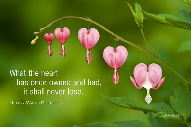 What the heart has owned...henry ward Beecher quote