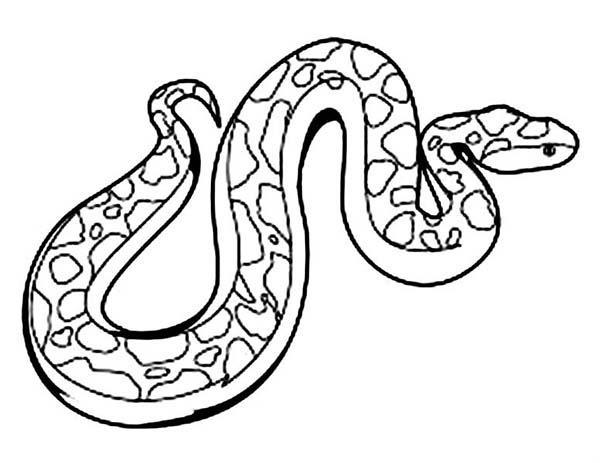 Pin By Coloringsky On Tren De Carton Snake Coloring Pages Coloring Pages Coloring Pages For Kids