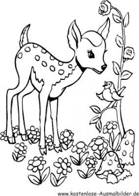 bambi & mushrooms | ausmalbilder tiere, ausmalbilder