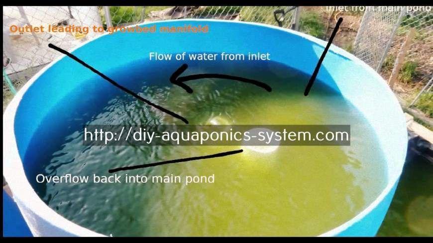 Aquaponics Aquaponics system, Aquaponics