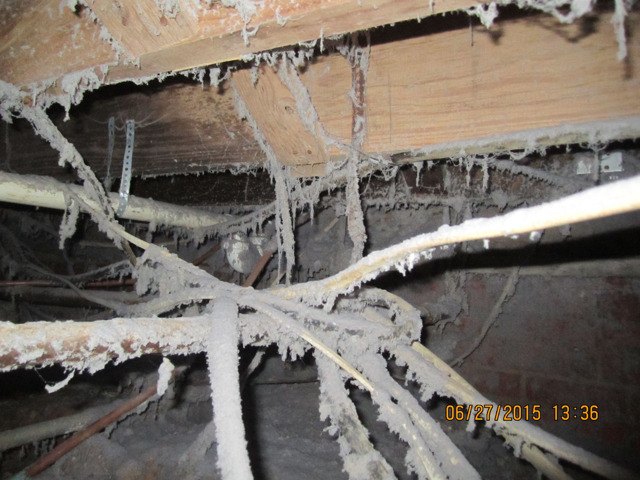 This Is A Picture Of A Crawl Space Of A Pier And Beam Foundation With The Dryer Vent Terminating Under The House Pier And Beam Foundation House Exterior Beams
