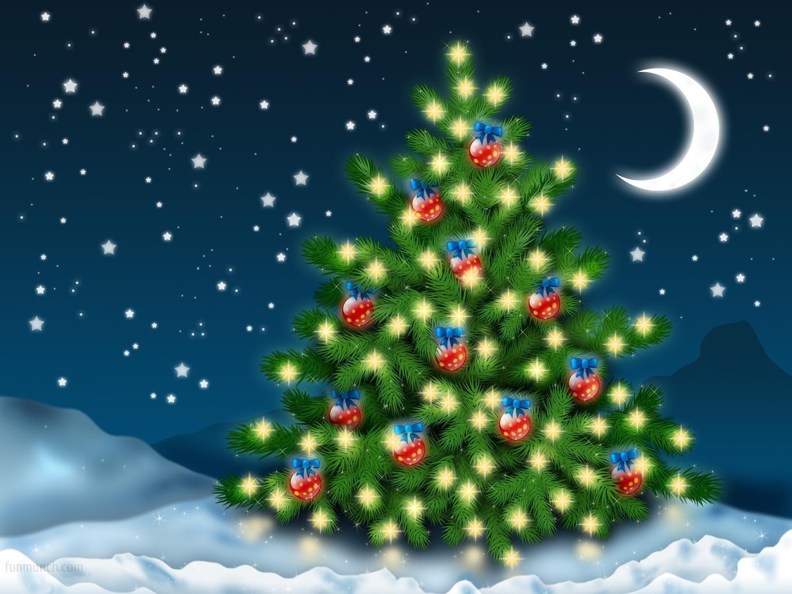 christmas lights pictures - Google Search | christmas lights ...