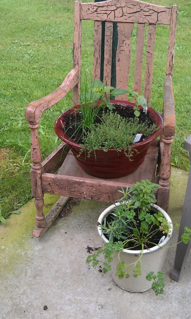 I Repurposed An Old Rocking Chair To Create A Patio Herb Garden
