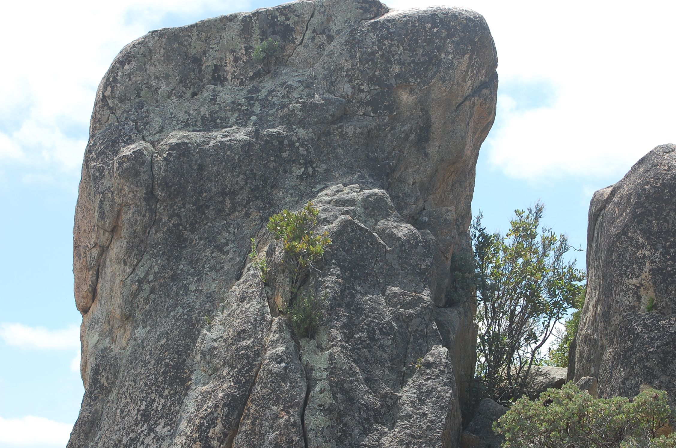 massive granite boulder up on the mountain--one of many at Cornbread Mesa Ranch